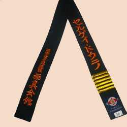Kyokushin karate black belt