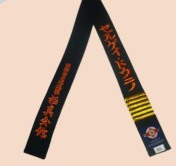Kyokushin karate black belt