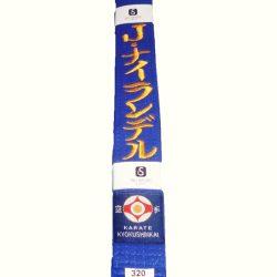 kyokushin blue belt