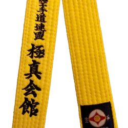 kyokushin karate yellow belt