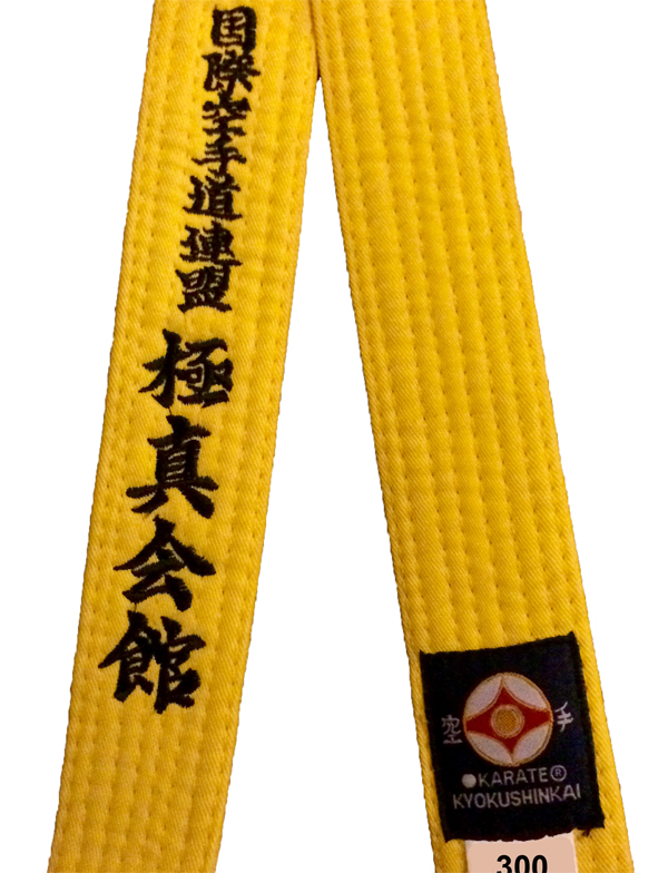 kyokushin karate yellow belt