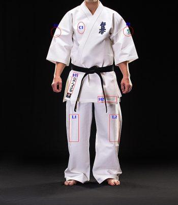 karate kyokushin logo