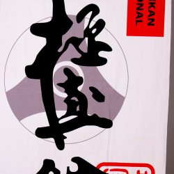 Kyokushinkan beach towel
